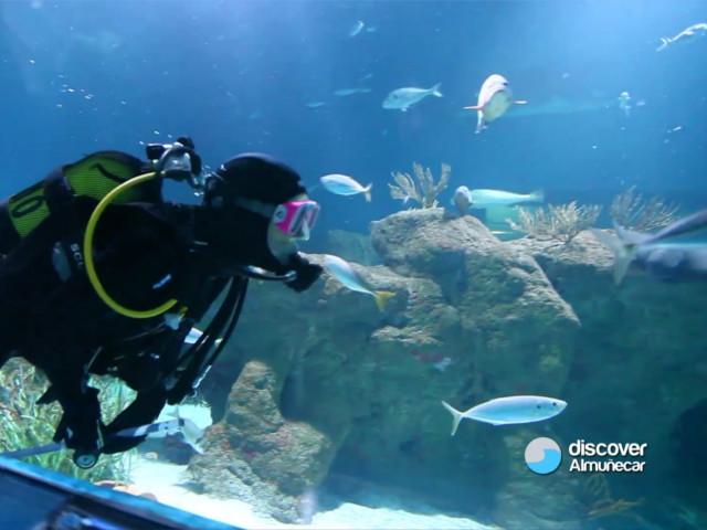 almunecar-aquarium-1