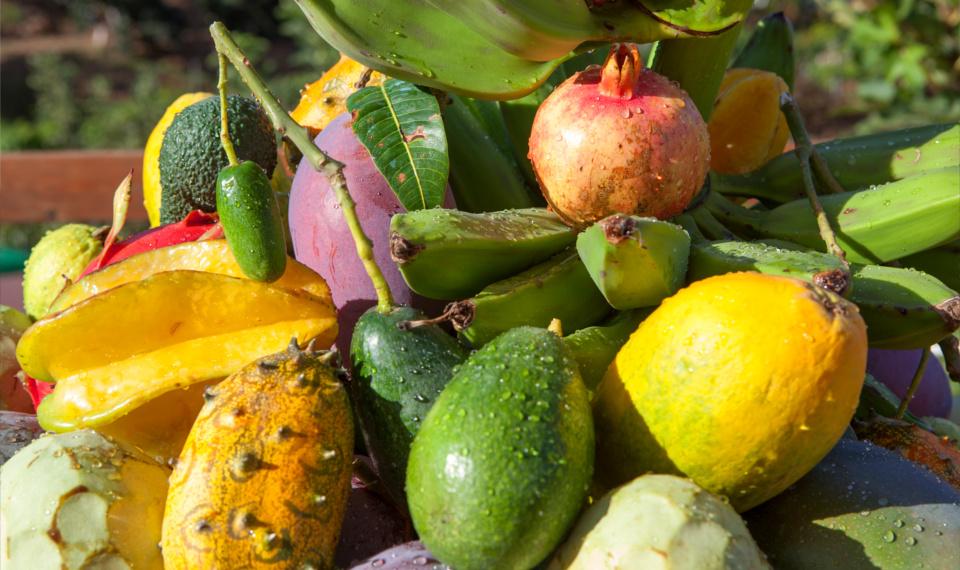 compra-mangos-aguacates-chirimoyas