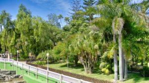 jardin botanico el majuelo