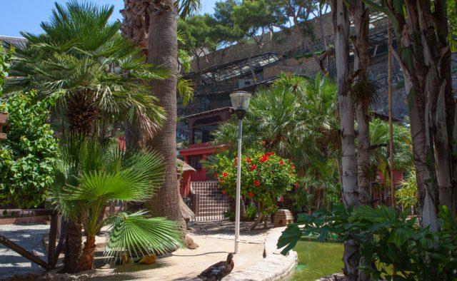 Parque ornitológico Loro Sexi 1