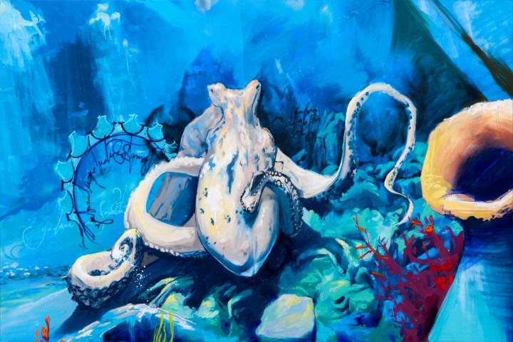 instalaciones-acuario-almuñecar-003