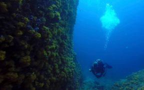 nautical-diving-3